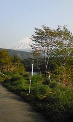 西湖&富士山.jpg
