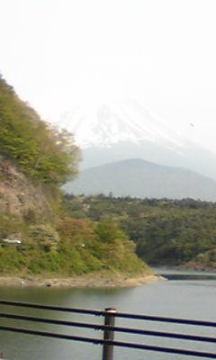 精進湖&富士山.jpg